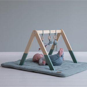 gimnasio para bebes 4